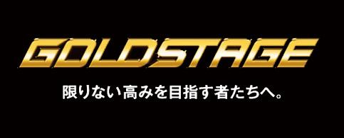 GOLDSTAGE/スエード調守備用手袋!
