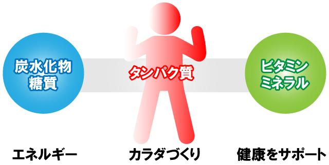 栄養とサプリメントの基礎知識【コンディションづくり編】